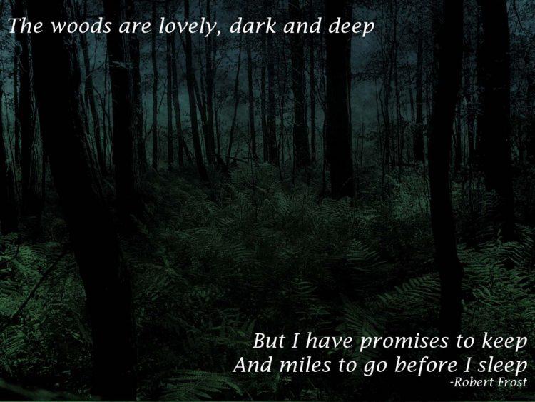 Dark Quotes Pictures (1)