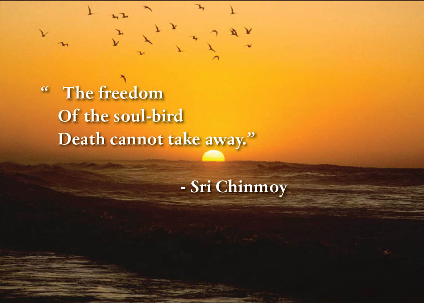 War Related Bird Claw Quote: 15 Famous Quotes About Death And Dying
