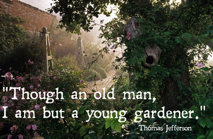Best Garden Quotes And Inspirational Gardening Sayings
