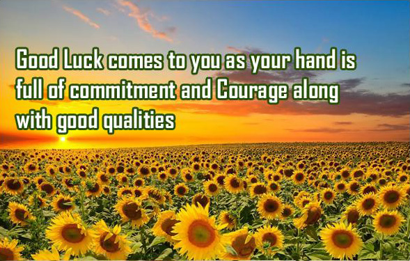Good Luck Picture Quotes