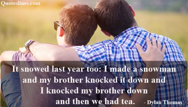 most funny brother quotes with images
