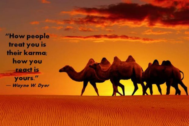 Wayne-Dyer-Quote-How-People-Treat-You-Is-Their-Karma