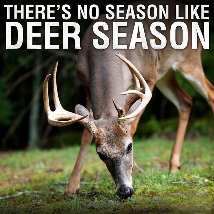 great deer hunting quotes