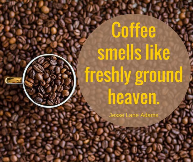 funny-coffee-quotations-with-cute-images
