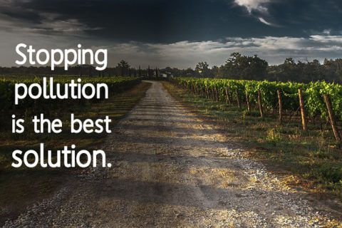 stop pollution quotes