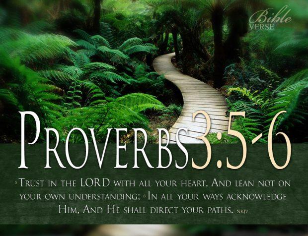 karma-quotes-bible-verses-Proverbs-3-5-6