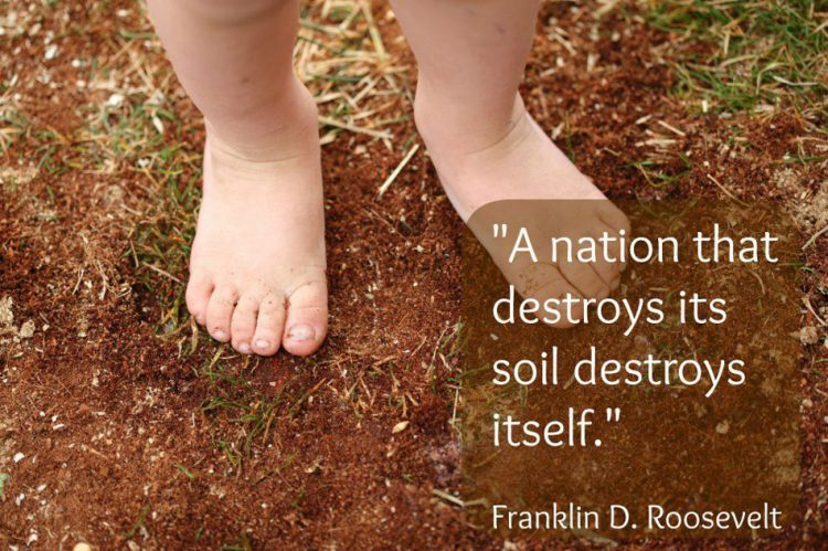 sayings on soil pollution