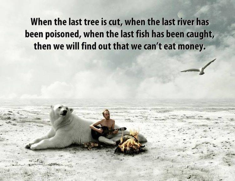 inspiring to plant tree