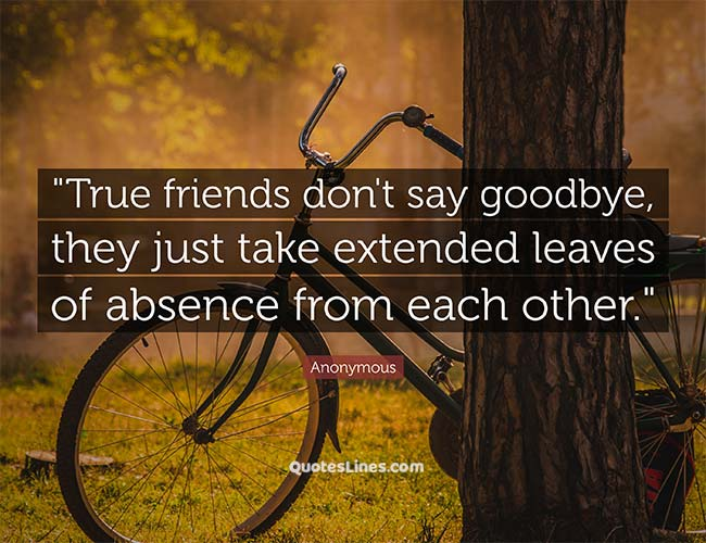 Goodbye-Quotes-for-True-Friends