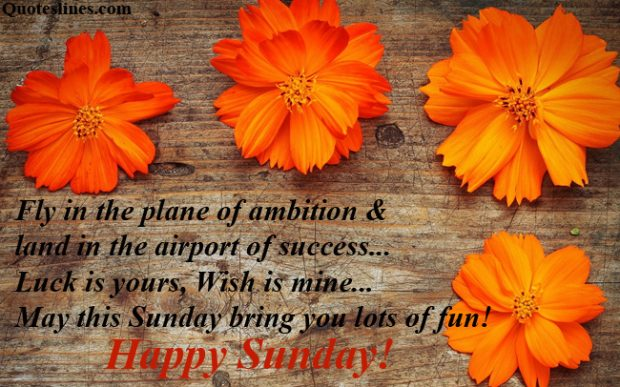 Happy-Sunday-Quotes-and-Wishes