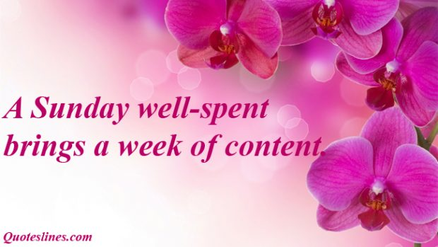 Sunday-quotes-with-flowers-images