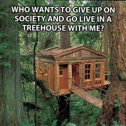 best tree quotes image