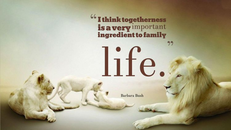 Family Quote Fascinating Top 30 Inspirational Quotes About Family With Images