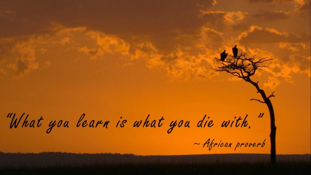 learning-sayings-African-proverb