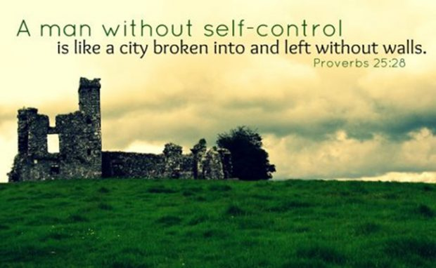 self-control-quotes-and-proverbs-25_28